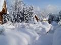ogrod zima